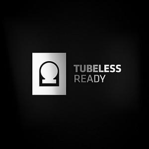 FeatureAsset_304730_tubeless_ready_rims